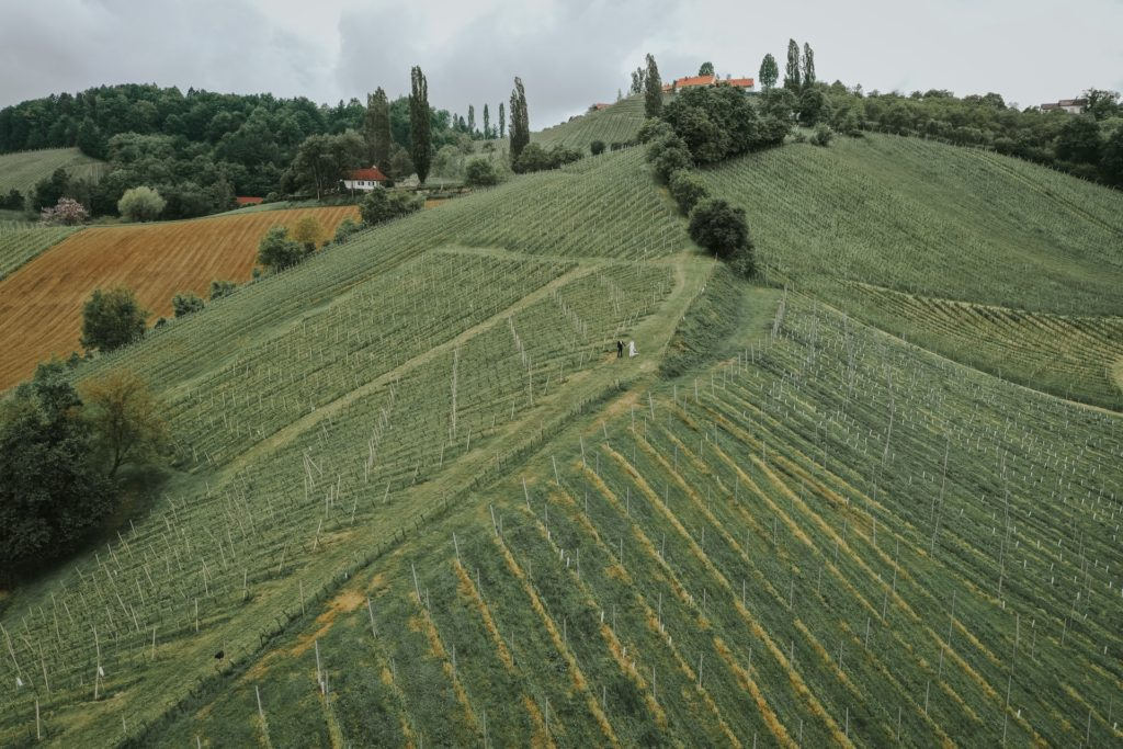 poroka-med-vinogradi-na-stajerskem (16)